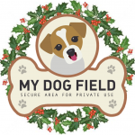Christmas Gift Vouchers For your Doggy Friends!